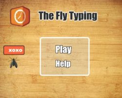 fly typing